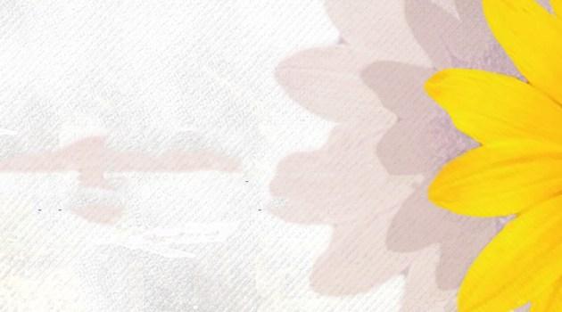 Varoşun Çiçekleri – Hızır Canbaz