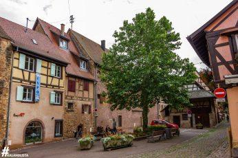 Eguisheim-IMG_2596