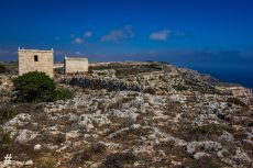 Malta_IMG_5525