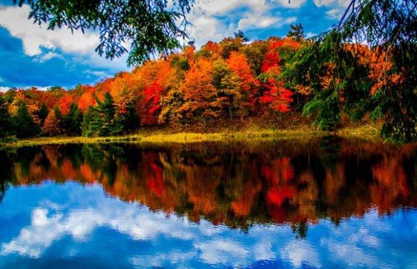 New England Fall Themed Wallpaper Itt Van Az ősz Itt Van 250 Jra Egy Csepp Eur 243 Pa