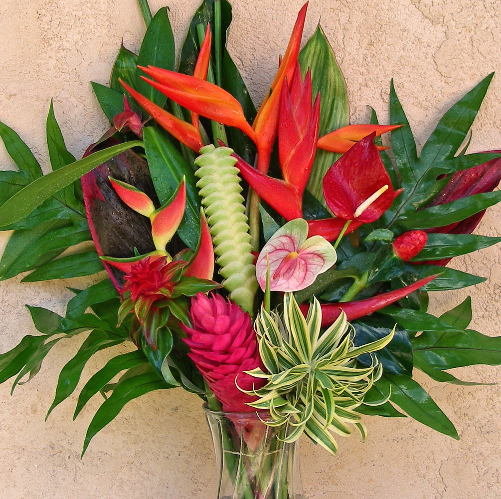 Hawaiian Holiday Special A rainbow of beautiful colors  edible Hawaiian treats