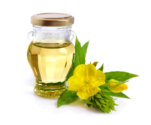 Oenothera evening primrose oil