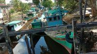 Potensi dan Masalah yang dihadapi Desa Dusun Kecil