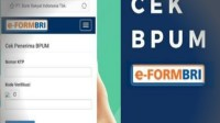 Cara Daftar BLT UMKM Online