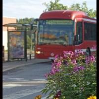 Goda bussnyheter för 731 och 745