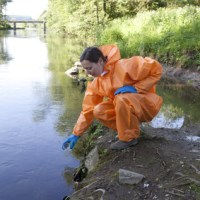 Konkret miljöpolitik ger resultat