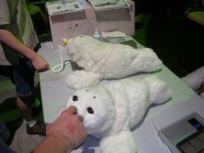 Paro - Baby Seal Robot helps with loneliness. published on Flickr (and here) under CC-BY-SA-2.0. Author: Aaron Biggs, Flickr user ehjayb https://www.flickr.com/photos/ehjayb/21826369/
