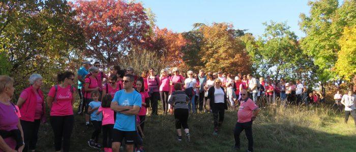 Marche de Rully pour l'Octobre rose