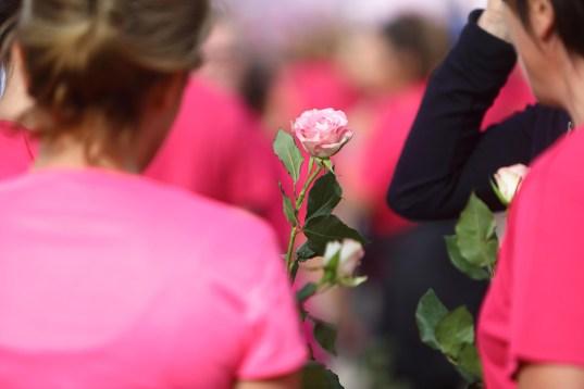 la-chalonnaise-2018-rose