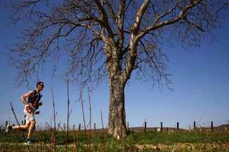 le marathon des vins de la côte chalonnaise au départ de givry