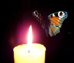 paląca się biała świeczka i kolorowy motyl