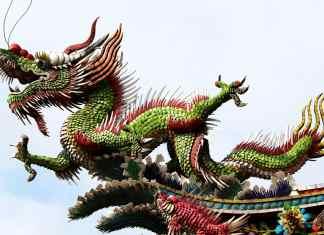 smok chiński