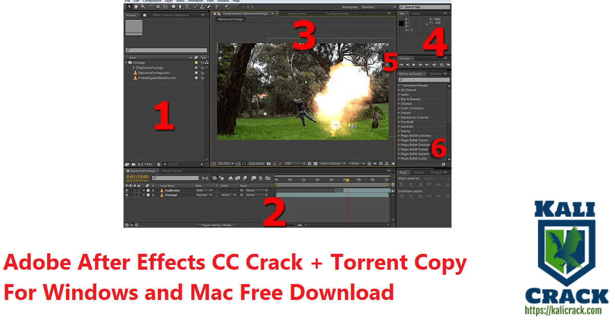 Adobe After Effects CC Crack + Torrent Copy For Windows and Mac Free Download
