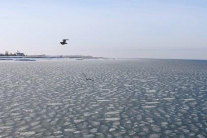 Eismeer: Die Ostsee im Winter