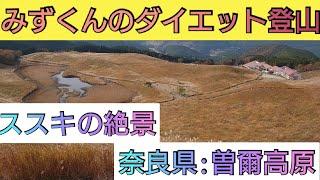 【ダイエット・登山】ススキの季節は曽爾高原!! − アフィリエイト動画まとめ