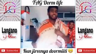 New Afaan Oromoo Vine compliation | Ethiopia| Langano Tube Present 🎁 − アフィリエイト動画まとめ