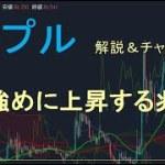 【仮想通貨 リップル(XRP)】少し強めに上昇の兆し。今後のシナリオをチャート分析12.9 − アフィリエイト動画まとめ