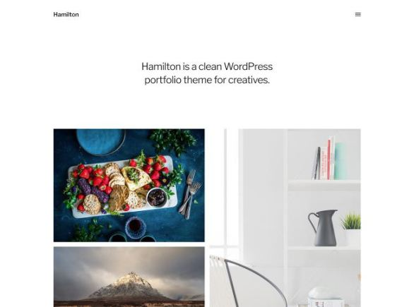 Premium WordPress Themes Hamilton