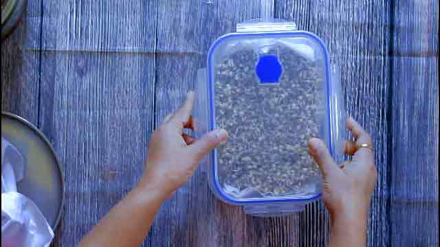 Use a plastic air tight container for refrigerating sprouts. Ensure moth beans are completely dried before refrigeration. Any kind of moisture may result into foul smell from moth beans.