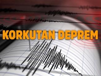 Deprem ve Yaşam Taktikleri