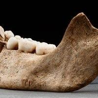 Nuo menneisyyden kaameat kannibaalit! Esimerkkejä ihmissyönnin esiintyvyydestä