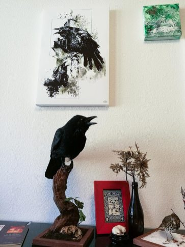 """Corvus Corvus"" – HelvEdition   Limited Edition Art Canvas Print"