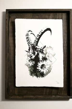 """Capra Ibex"" – HelvEdition by Ka L-O-K | Edition Spéciale, impression sur papier vergé"