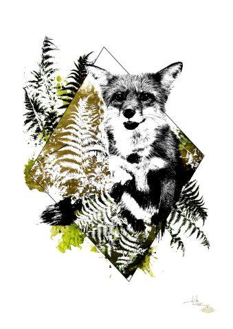 """Vulpes Vulpes"" (The Fox)– HelvEdition by Ka L-O-K"