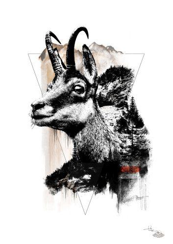 """Rupicapra Rupicapra"" (The Chamois) – HelvEdition by Ka L-O-K"