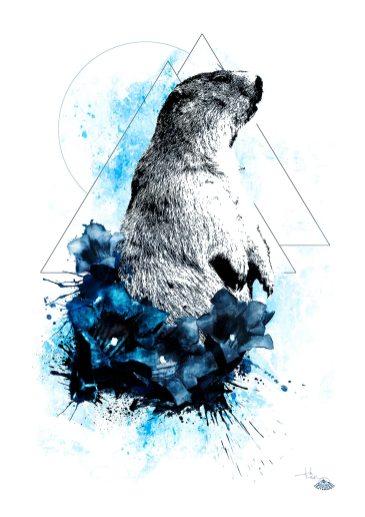 """Marmota Marmota"" (Das Murmeltier) – Illustration aus der Serie HelvEdition von Ka L-O-K | Graphic Arts"