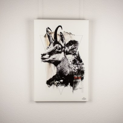 """Die Gämse"" | HelvEdition – Rupicapra Rupicapra von Ka L-O-K | Limited Edition Leinwanddruck"