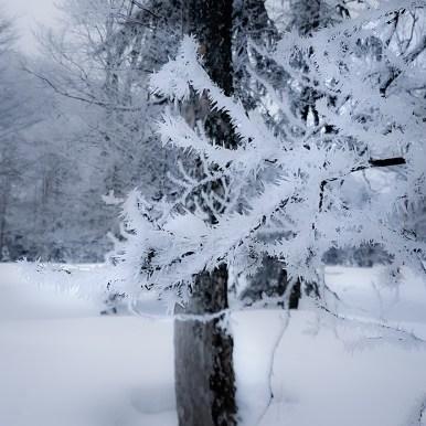 Cold Ice by Ka L-O-K