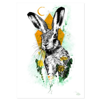 """Lepus europaeus"" (Le Lièvre) – Illustration de la série HelvEdition de Ka L-O-K 