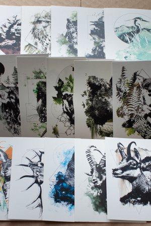 Cards HelvEdition – Illustration Ka L-O-K | Graphic Arts
