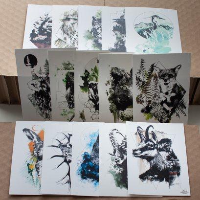 Cartes HelvEdition – Illustration Ka L-O-K | Graphic Arts