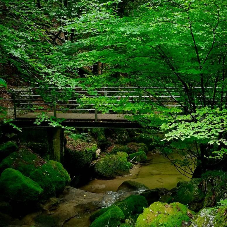 Bridging picture by Ka L-O-K
