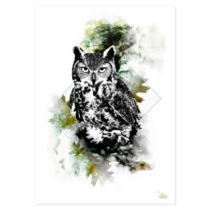 """Bubo Bubo"" (L'hibou) – HelvEdition by Ka L-O-K"
