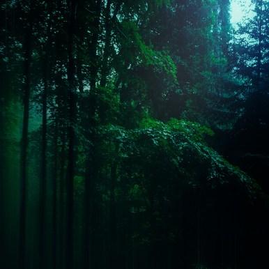Moody Woods - Green Rain   Ka L-O-K