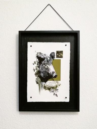 """Wildsau""   HelvEdition – Sos Scrofa von Ka L-O-K   Kunstdruck auf Büttenpapier"
