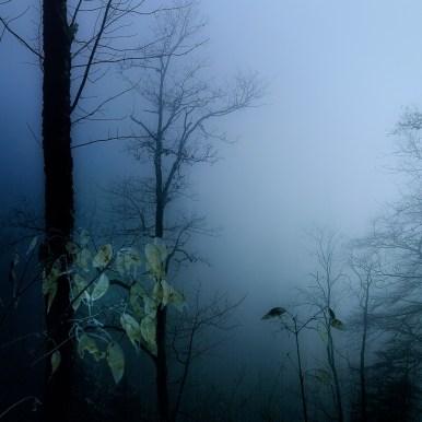 Fog in Combe Grède by Ka L-O-K