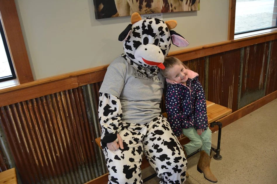 Lona-the-cow-with-guest