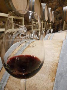 Hacienda Guadalupe - Vino Melchum