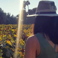 Tips para viajar a la Ruta del Vino en Valle de Guadalupe México