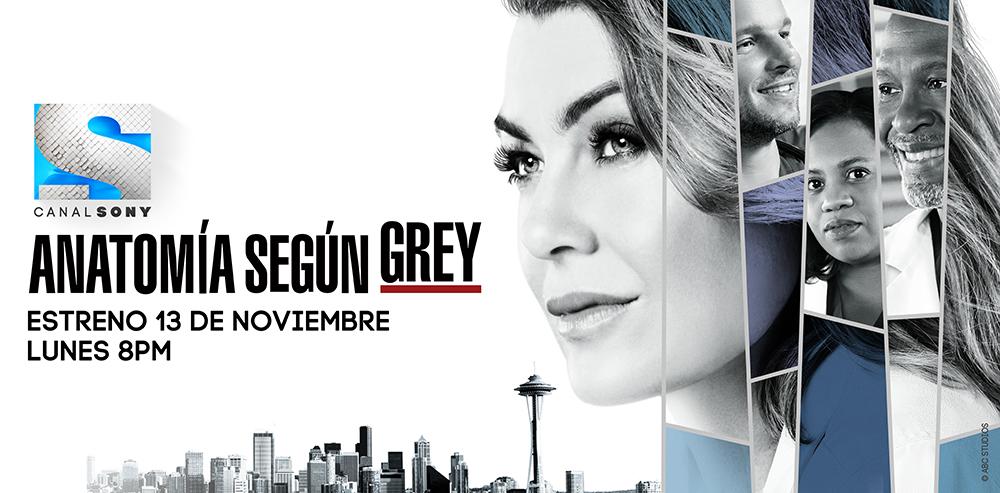 temporada 14 de Grey's Anatomy