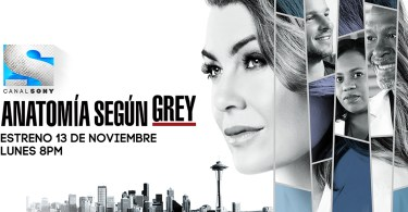 temporada 14 de Grey's Anatomy
