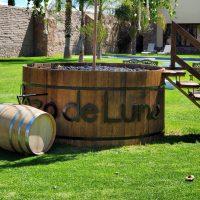 Pozo de Luna; vino mexicano en San Luis Potosí