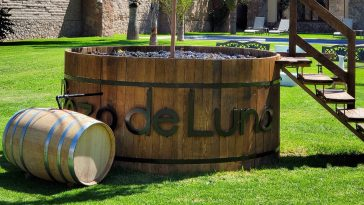 Pozo de Luna vino mexicano