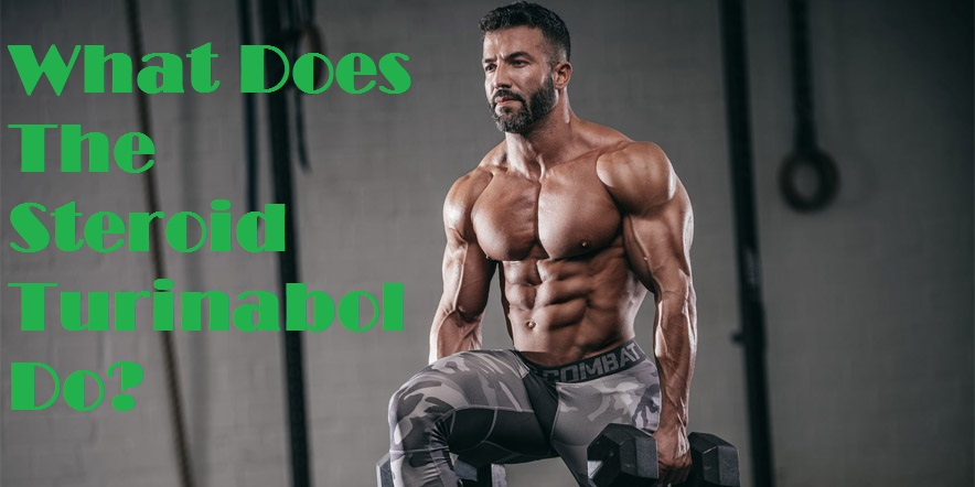 What Does The Steroid Turinabol Do