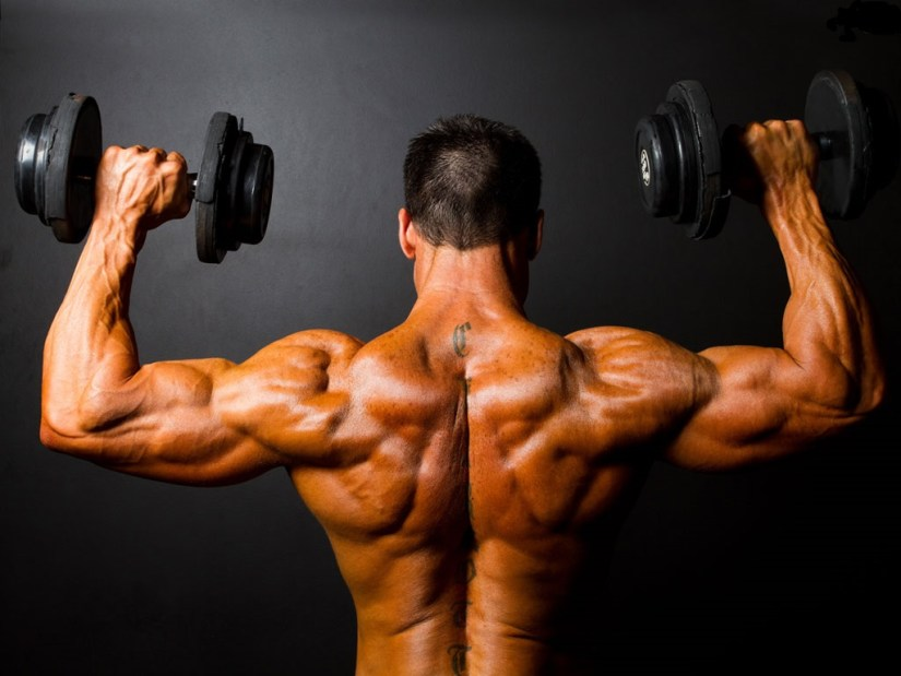 Dbol-only-cycle-muscular-back