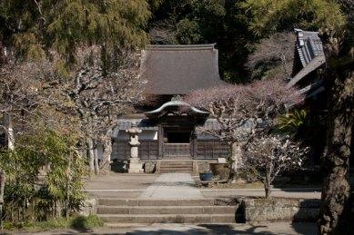 奥に見える美しい屋根の建物が国宝・舎利殿。源実朝が中国より請来した佛舎利を安置するお堂。唐様建築の典型的な建築物です。
